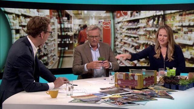 Koppert Cress en RTL Z - ¿Alimento del futuro? Una alternativa sana a la sal