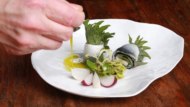 Swedish herring