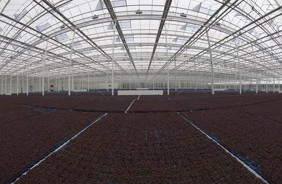 Heating & Cooling at Koppert Cress