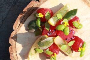 "Blogspitality: ""Senna Meloni – An experimental mixologist on a journey of flavours"""
