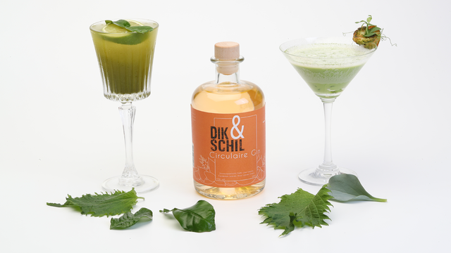 Matcha Gimlet and green curry
