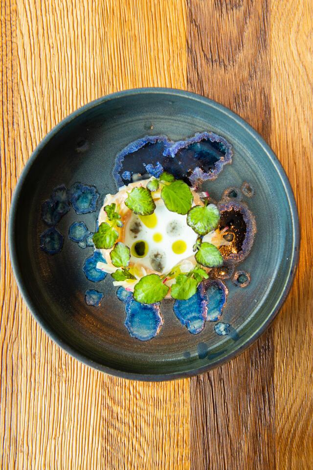 Truite saumurée, pickles d'oignon, radis et Hippo Tops