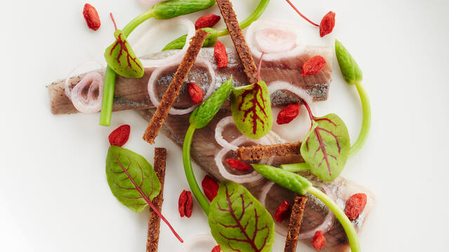 Herring with red veined sorrel, sour shallot, goji berry and pumpernickel bread