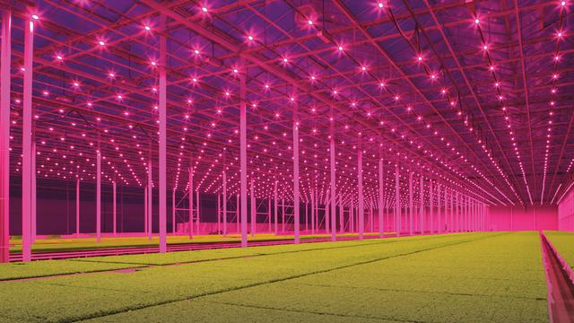 Innovative Greenhouse