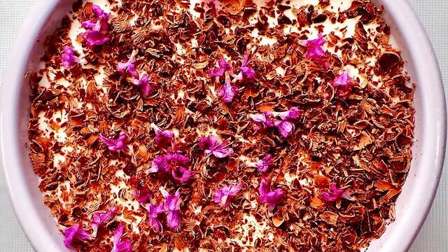 Blackcurrant tiramisu and Zallotti Blossom