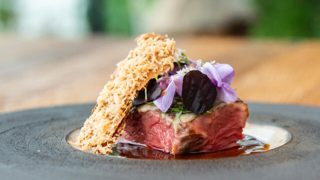 Smoked long tenderloin, Shiso Purple, duck liver and mole gravy