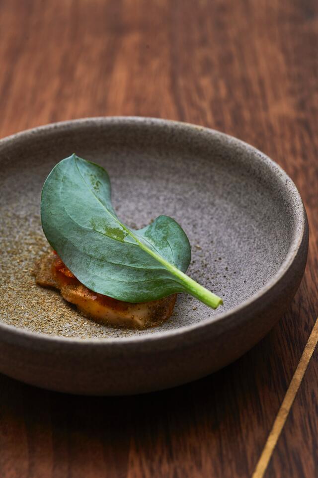 Huître, carotte, Oyster Leaves