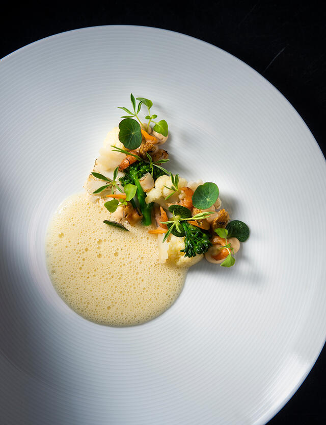 North Sea mussels and shrimps, Zorri Cress, Lupine Cress