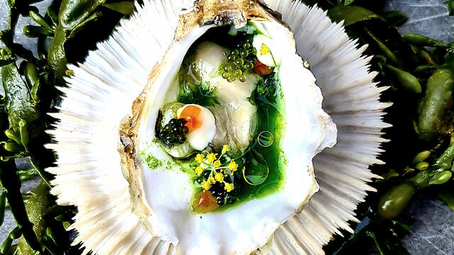 Oyster, dill, salmon egg