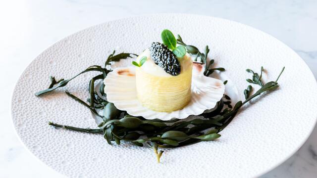 Coquille Saint-Jacques, poireau, caviar, Borage Cress