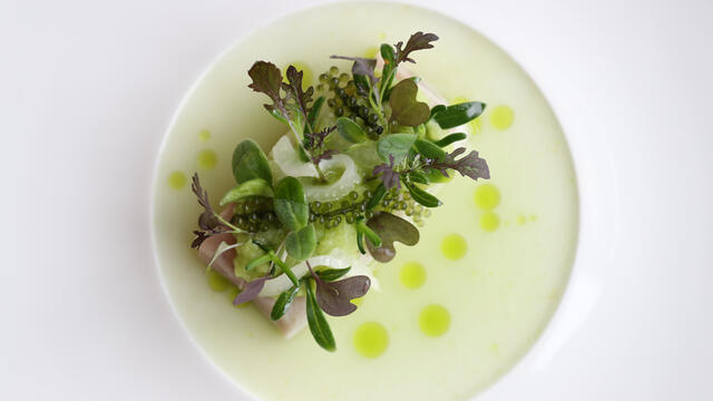 Mackerel, cucumber gazpacho, fennel, salty cresses