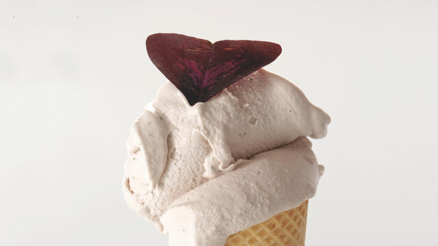 Yka Leaves, Shiso Leaves Purple and Cabernet Franc grape juice ice-cream