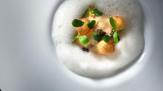 North Sea crab and Tahoon Cress