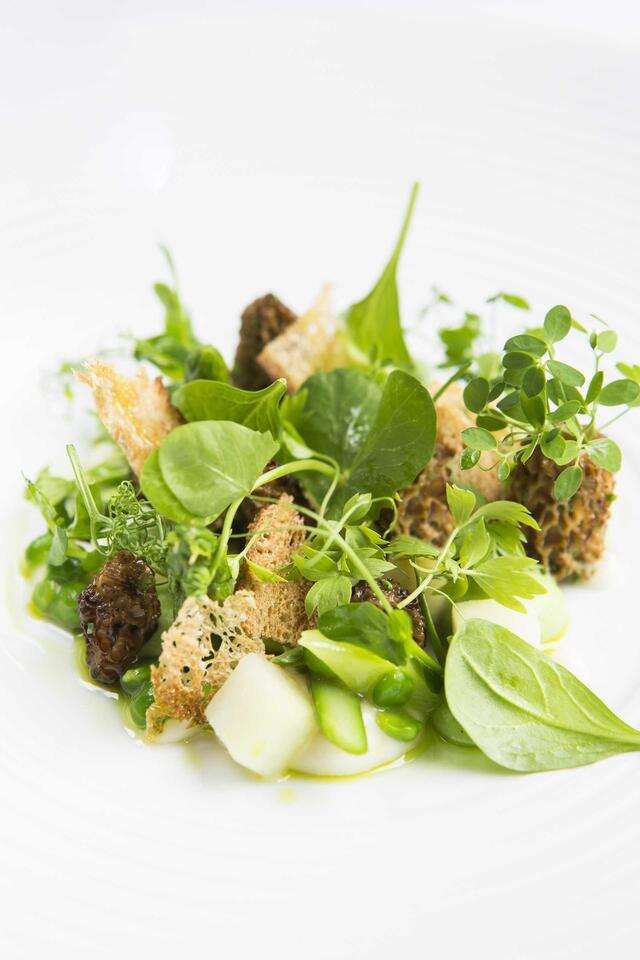 Dried morel, asparagus, pea, parsley