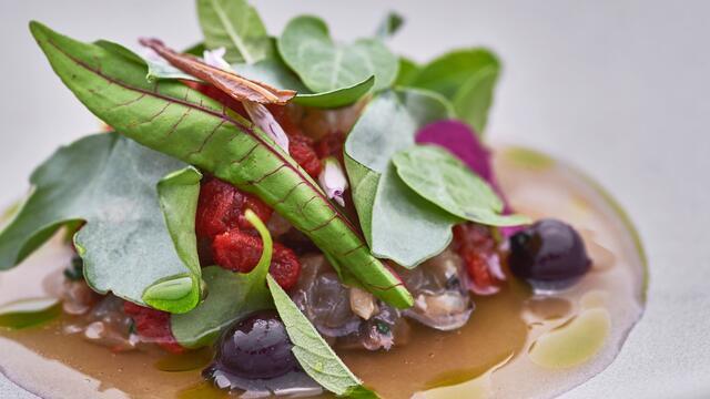 Makreel, zuring, tomatenwater met ijzerkruid, yostabes, Syrha Leaves, Yka Leaves