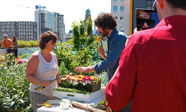 Rotterdam's Rooftop farm is sunny backdrop for 3rd Floral Tweetjam