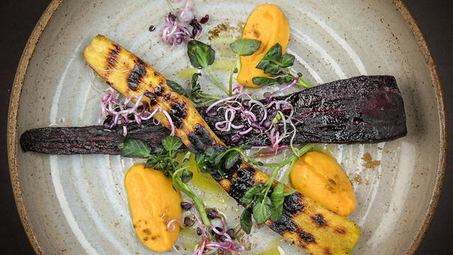 Roasted winter carrot with cumin, radish sprouts and Hippo Tops