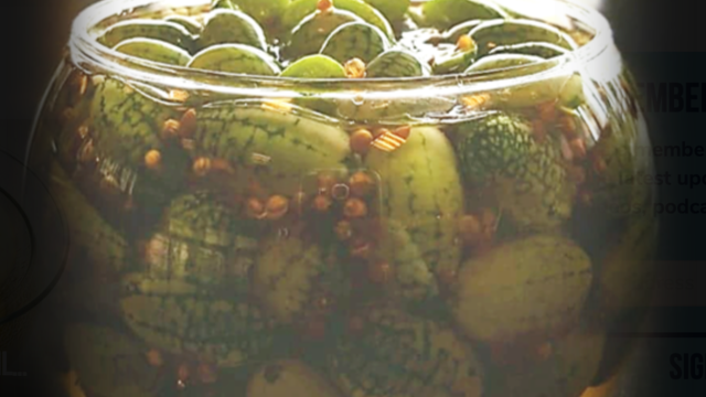 Pickled Pepquiño