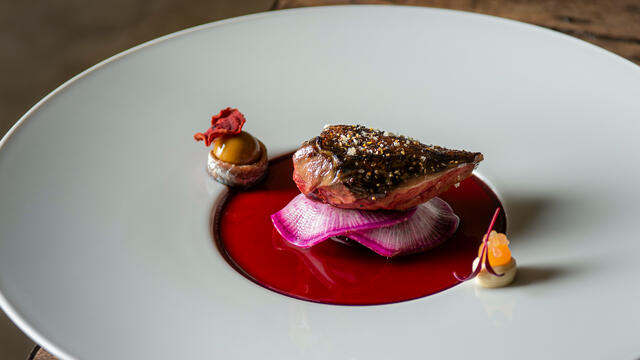 Pigeon breast Radicchio - risotto, anchovies, daikon and beetroot