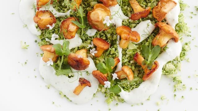 Rauwkosttartaar van broccoli, cantharellen en Affilla Cress