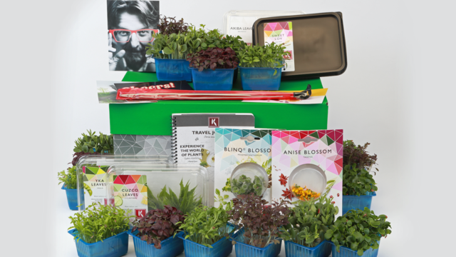 Koppert Cress UK to launch new 'Cress Couture'