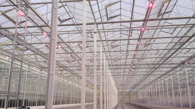 New LED lights, step towards sustainable cultivation