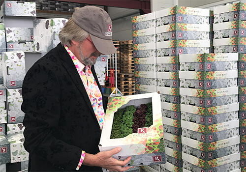 Koppert Cress stellt neue bunte Verpackungsserie vor